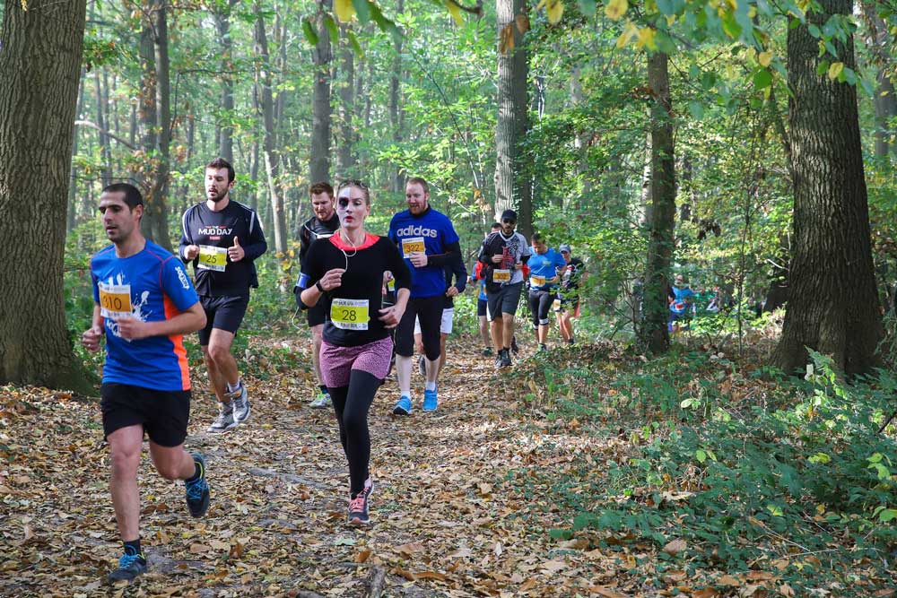 Parcours en forêt de la Run and Cheers
